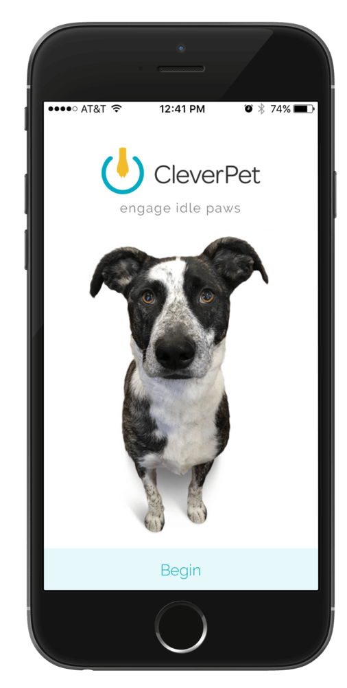 CleverPet mobile app screen