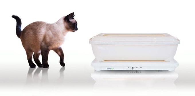 Siamese cat uses Tailio smart litter box